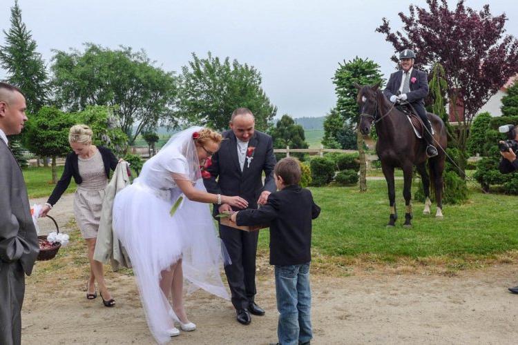 Komunie, śluby, urodziny