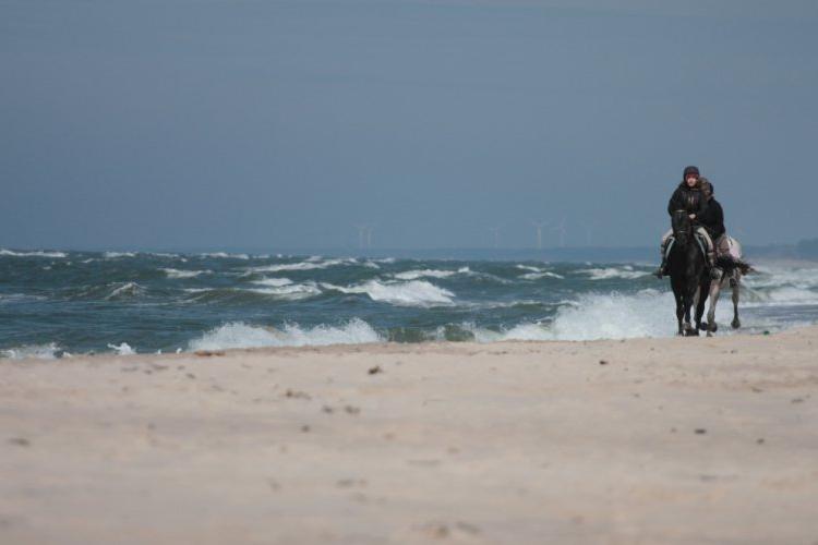 Wyjazdy na plażę
