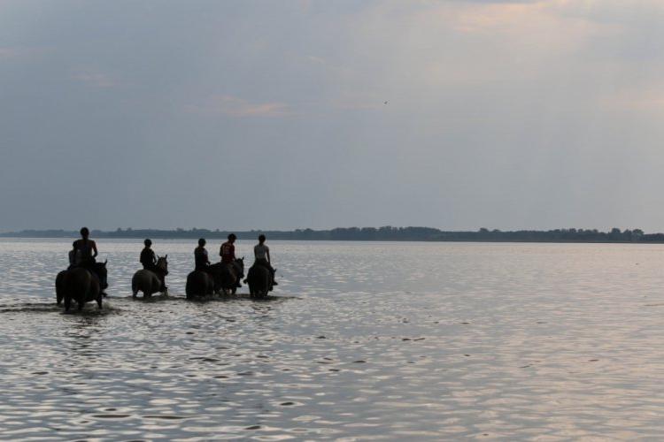 Wyjazdy nad jezioro